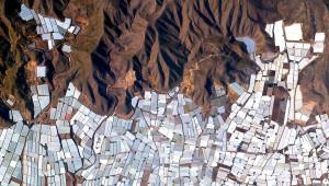 36.78234°N 2.74315°W.: Drivhus i Almeria, Spania