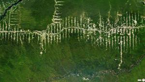5°40′S 52°44′W. Trefelling for å få fram en vei i Para, Brasil